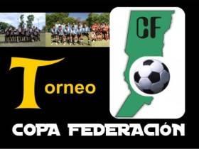 Copa Federacion 2014