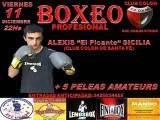 Afiche Lemos Box