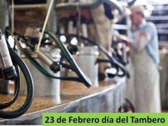 Dia del Tambero - Foto SRLC