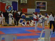 Taekwondo WTF en Santa Fe - Foto CSyDA