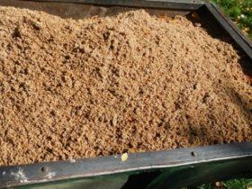 Bagazo de cebada - Foto INTA