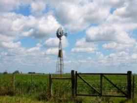 Clima de campo - Foto SRLC