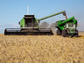 Cosecha de Trigo - Foto Ministerio de AgroIndustria